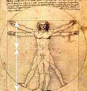 davinci's Vitruvian Man showing Golden Ratio